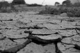 乾燥する地面